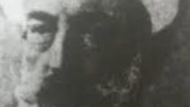 الشيخ محمود الحمزاوي