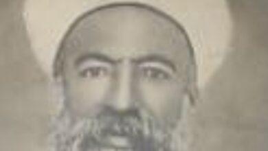 الشيخ محمود أبو الشامات