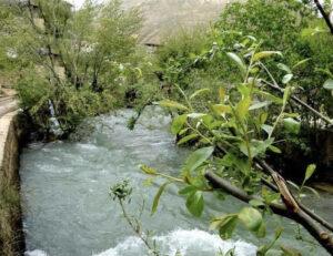 نهر المليحي
